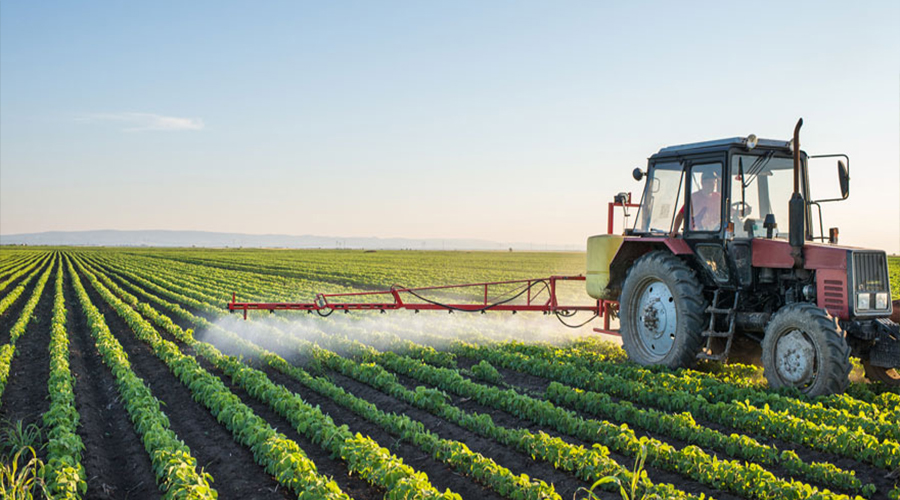 CHINA'S DYNAMIC AGRIC SECTOR AND THE LESSONS FOR GHANA