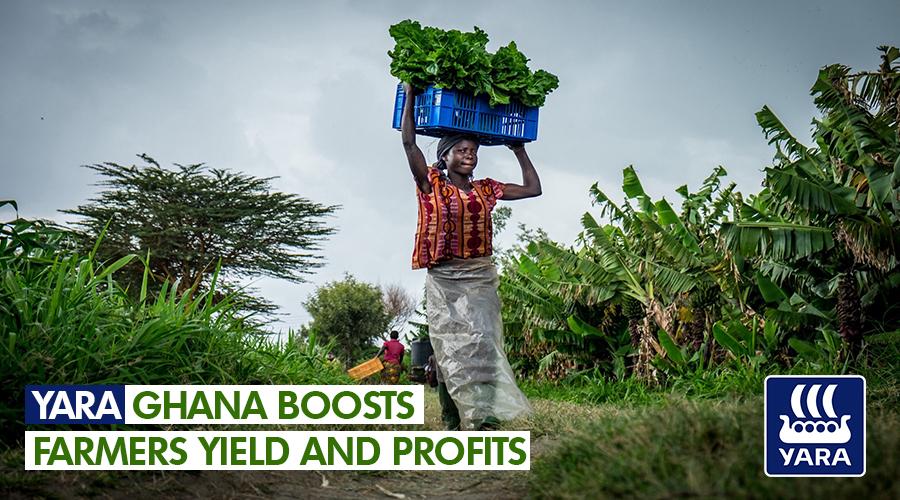 YARA GHANA BOOSTS FARMERS YIELD AND PROFITS