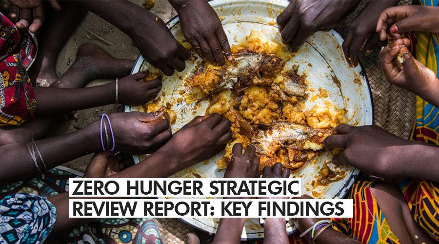 ZERO HUNGER STRATEGIC REVIEW REPORT: KEY FINDINGS