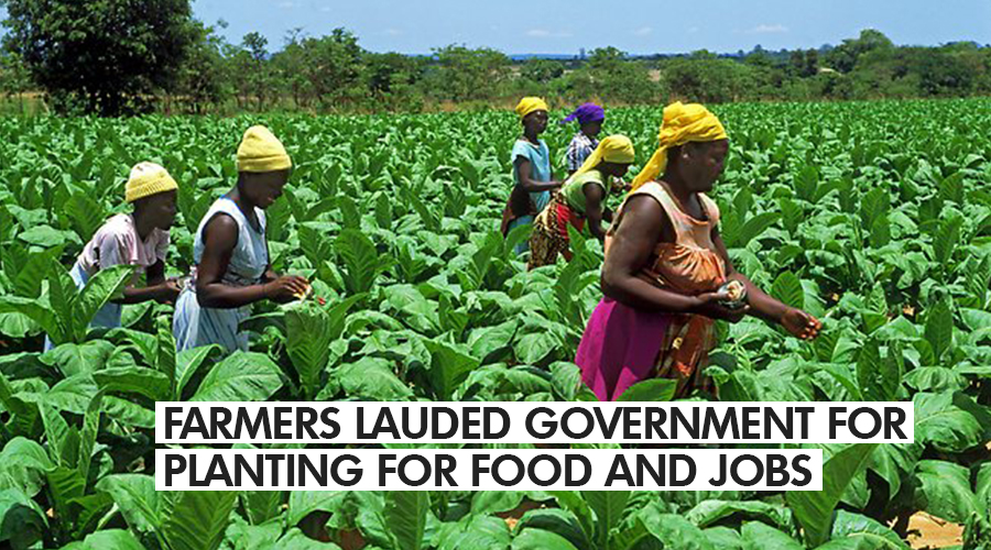 FARMERS LAUDED GOVERNMENT FOR PLANTING FOR FOOD AND JOBS INITIATIVE