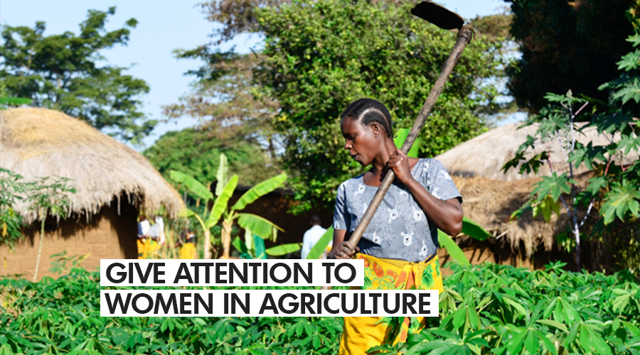 GIVE ATTENTION TO WOMEN IN AGRICULTURE-AGRIHOUSE FOUNDATION TELLS GOV'T