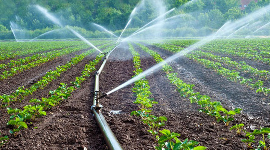IRRIGATED AGRICULTURE AS A PATH FOR INCREASED FOOD PRODUCTION